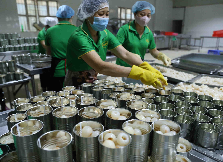 Vietnam, Germany boost strategic partnership hinh anh 18