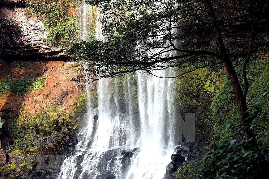 Dambri Waterfall - Central Highlands' majestic beauty hinh anh 4