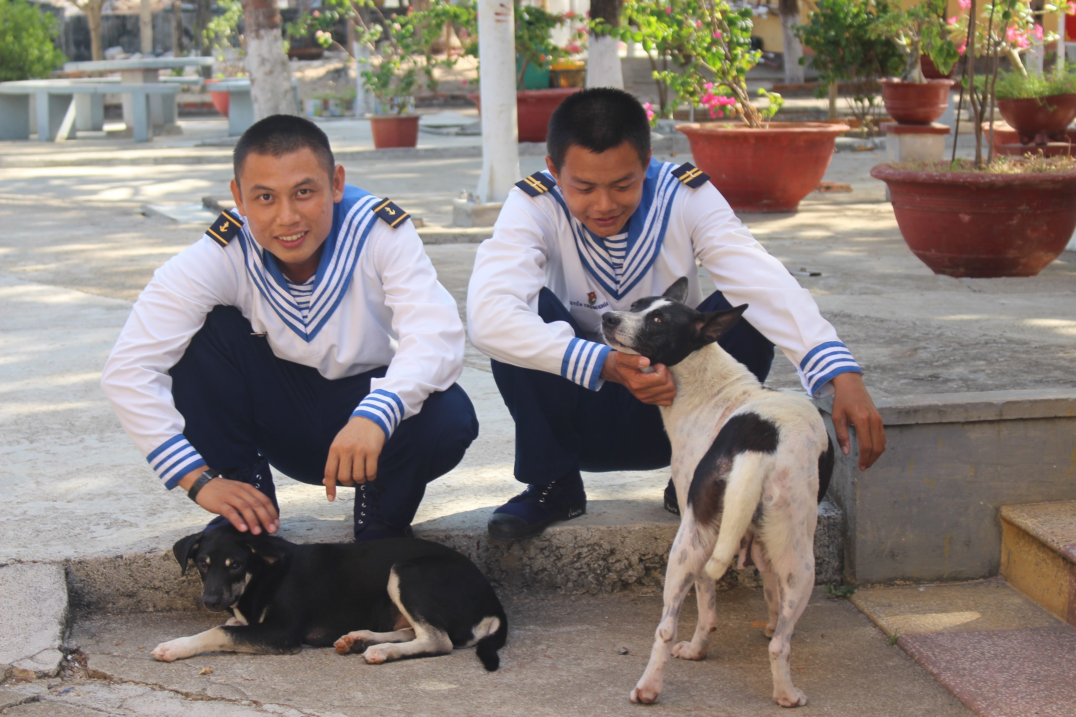 Daily life of naval soldiers in Truong Sa island district hinh anh 1