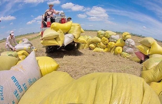 Vietnam's economy enters 2021 with optimism: CIEM economist hinh anh 2