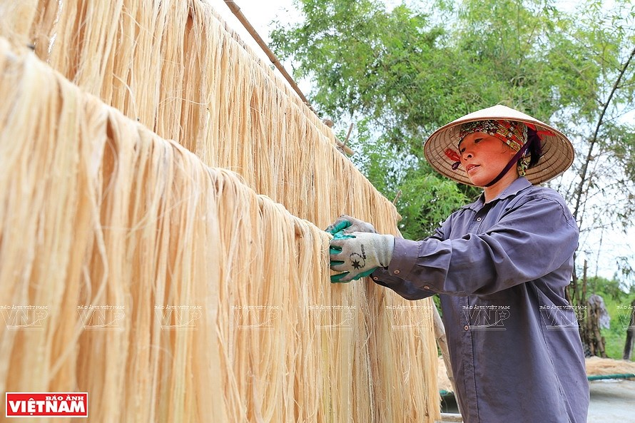 Vietnamese banana fibers reach out to world market hinh anh 3