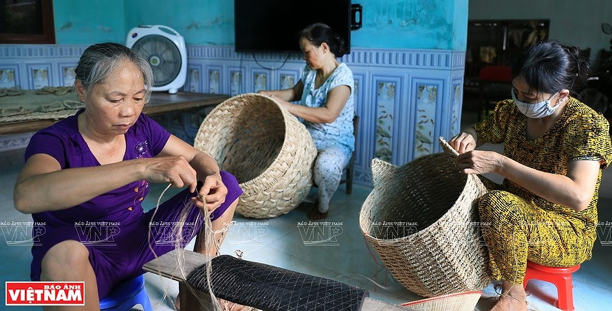 Vietnamese banana fibers reach out to world market hinh anh 7