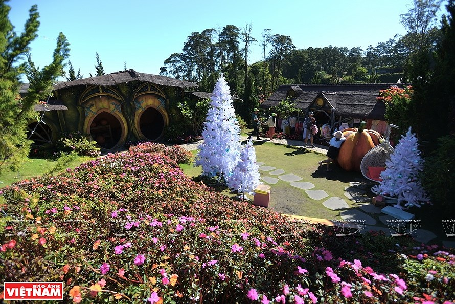 Da Lat, the capital of flower export hinh anh 4