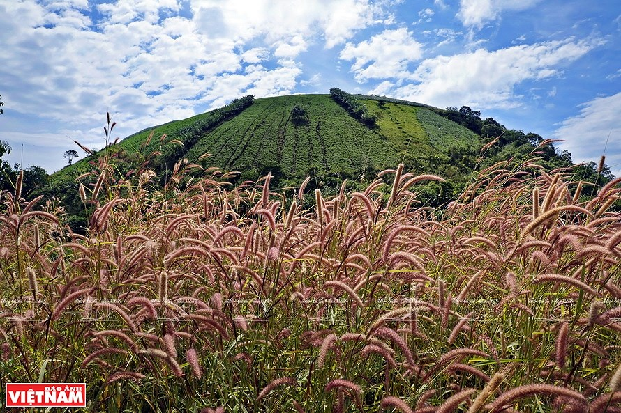 Majestic nature of Dak Nong province hinh anh 6