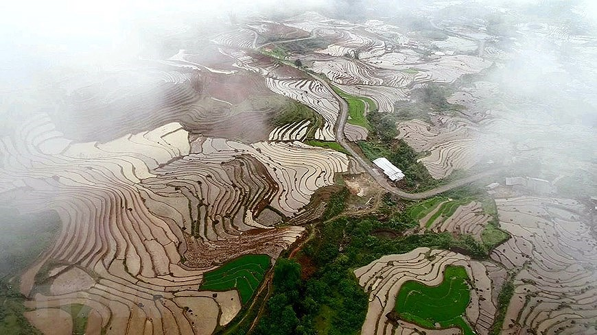 Y Ty rice terraces in pouring-water season hinh anh 1