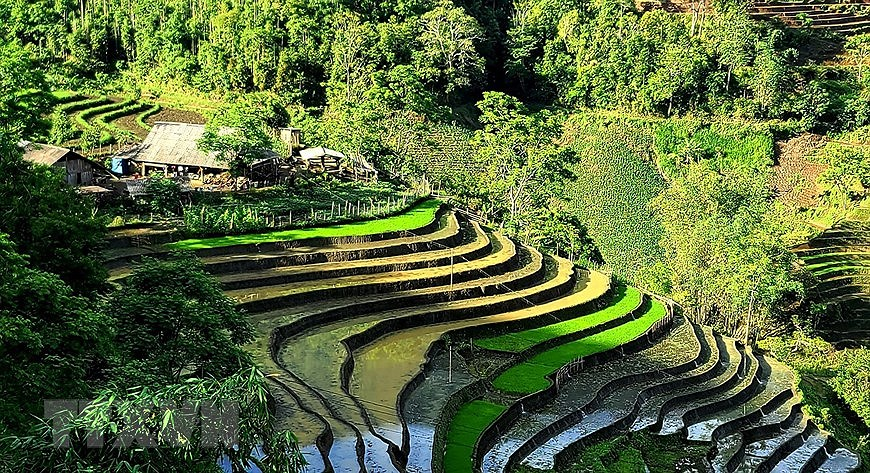 Y Ty rice terraces in pouring-water season hinh anh 2