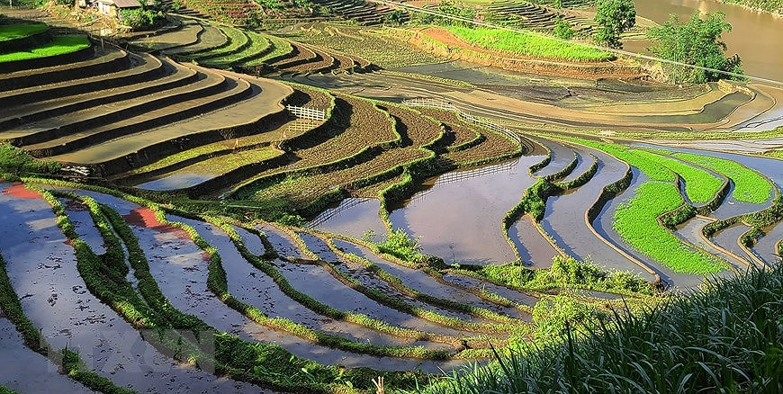 Y Ty rice terraces in pouring-water season hinh anh 3