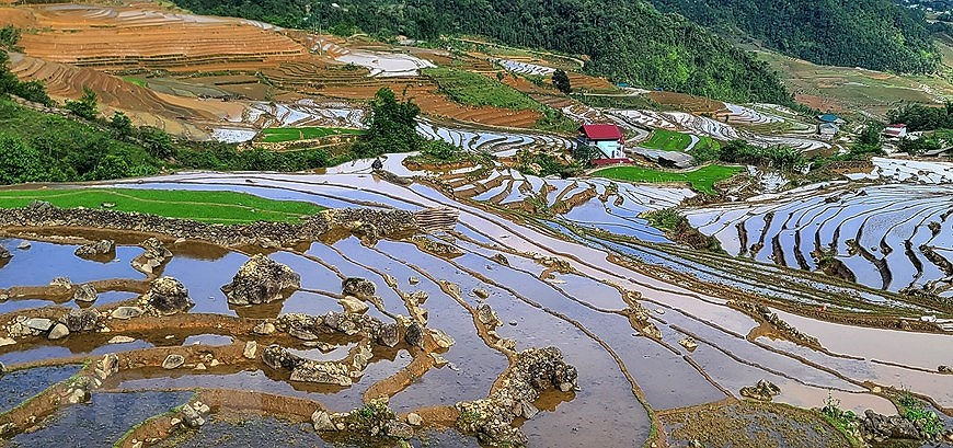 Y Ty rice terraces in pouring-water season hinh anh 4