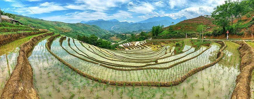 Y Ty rice terraces in pouring-water season hinh anh 9