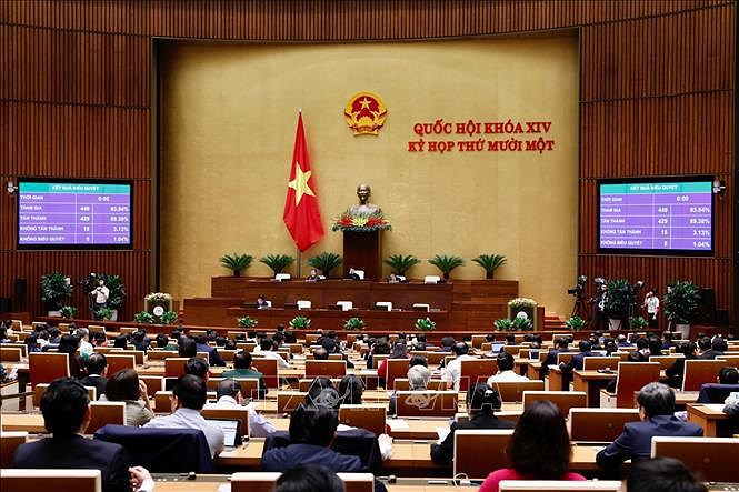 Legislators to elect Chairperson of NA, National Election Council hinh anh 1
