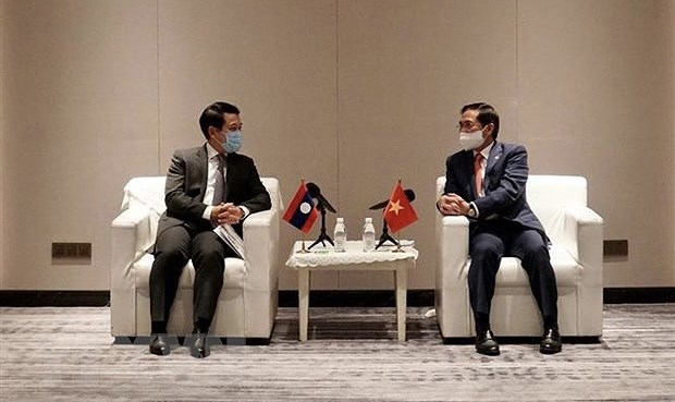 Foreign ministers of Vietnam, Laos applaud mutual support in COVID-19 fight hinh anh 1