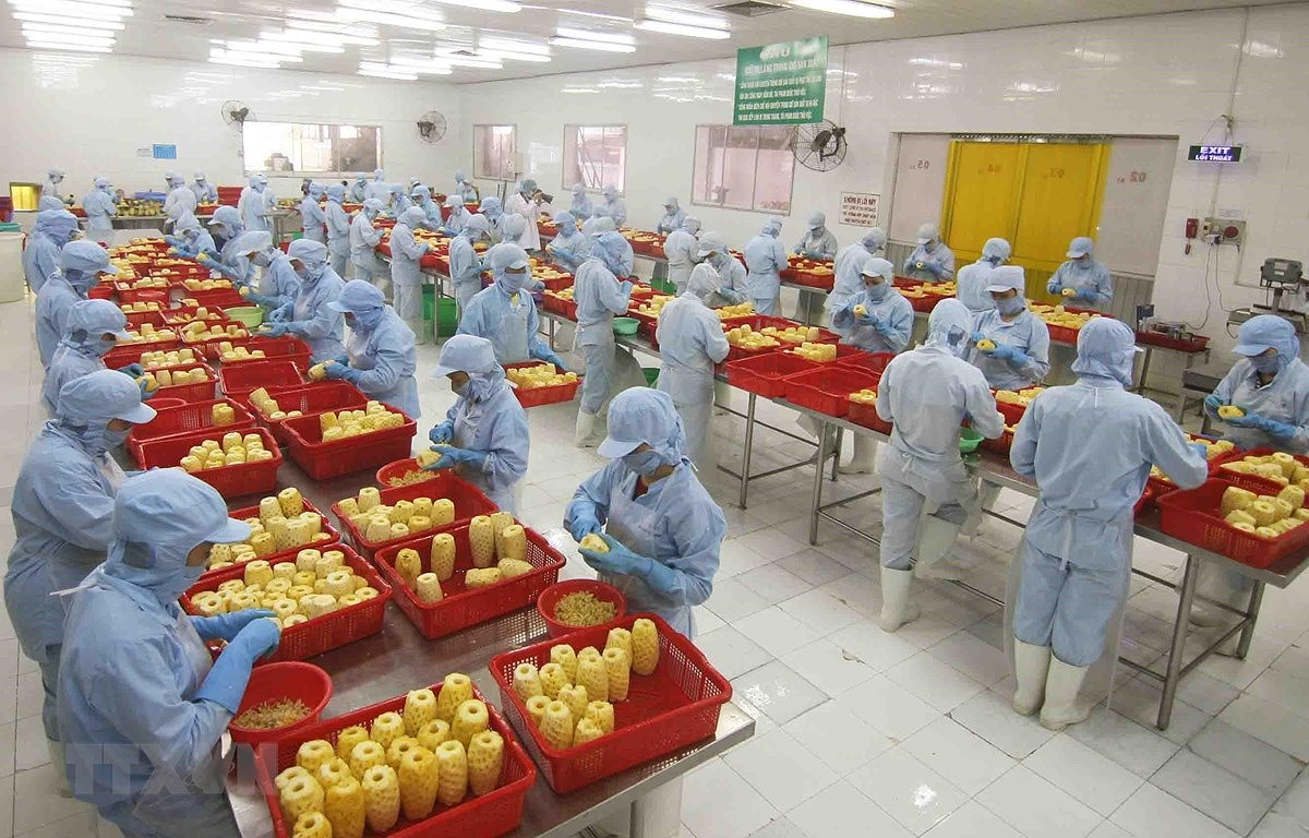 Manufacturing and processing sector playing key role in FDI attraction hinh anh 1