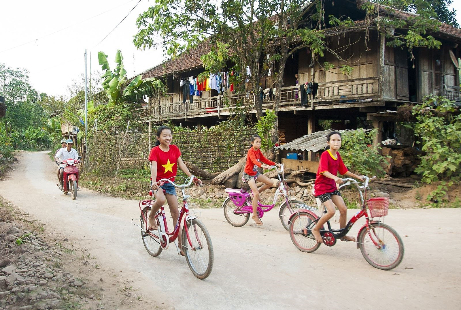 Vietnam's human rights achievements undeniable hinh anh 2