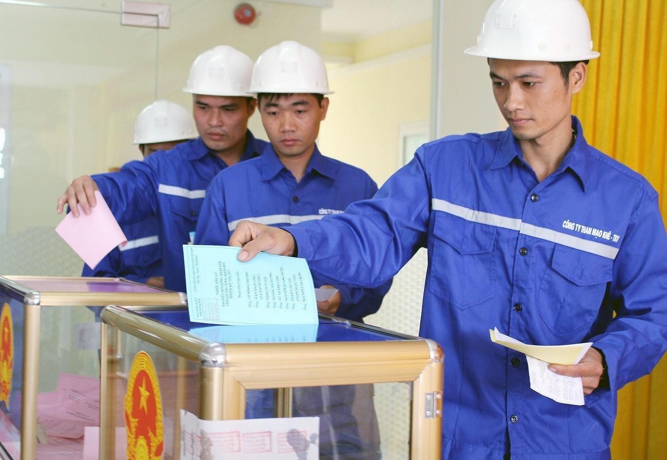 Выборы депутатов Национального Собрания и депутатов Народных Советов всех уровнеи - Всенародныи праздник hinh anh 6