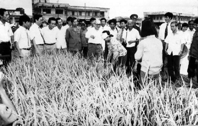 Dai hoi lan thu VI cua Dang: Khoi xuong va lanh dao su nghiep doi moi hinh anh 11