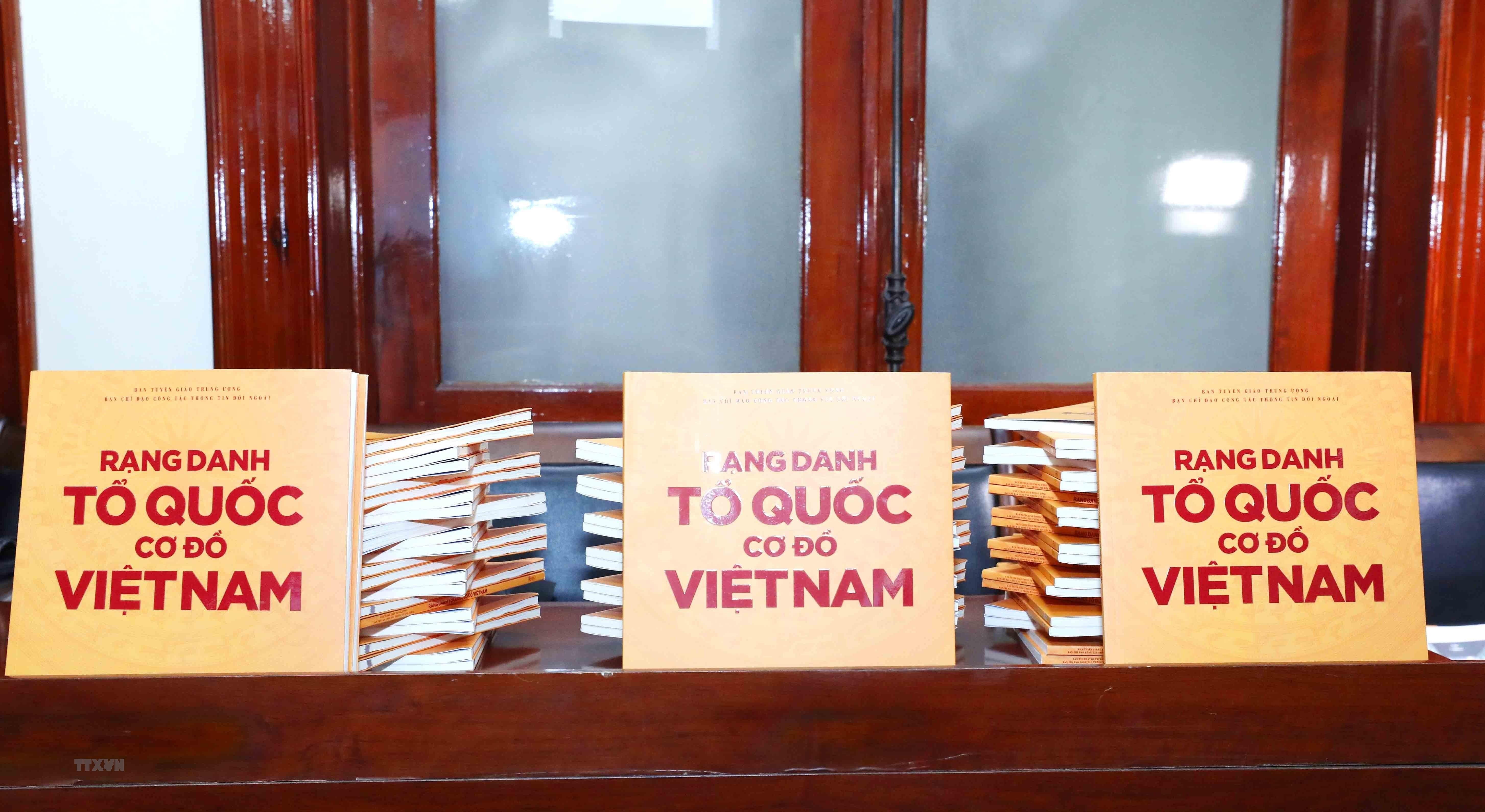Dai hoi XIII cua Dang: Khai truong Trang Thong tin doi ngoai dien tu hinh anh 2