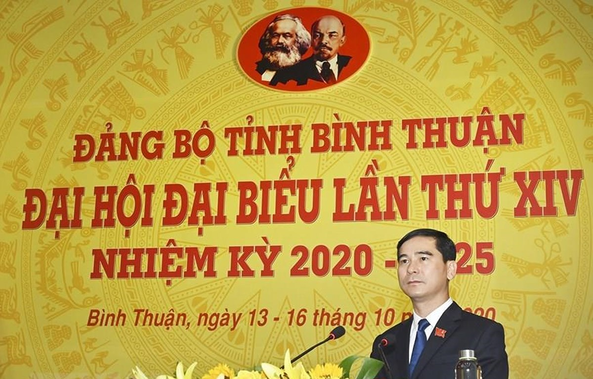 Dua tinh Binh Thuan phat trien nhanh, ben vung, manh ve kinh te bien hinh anh 1