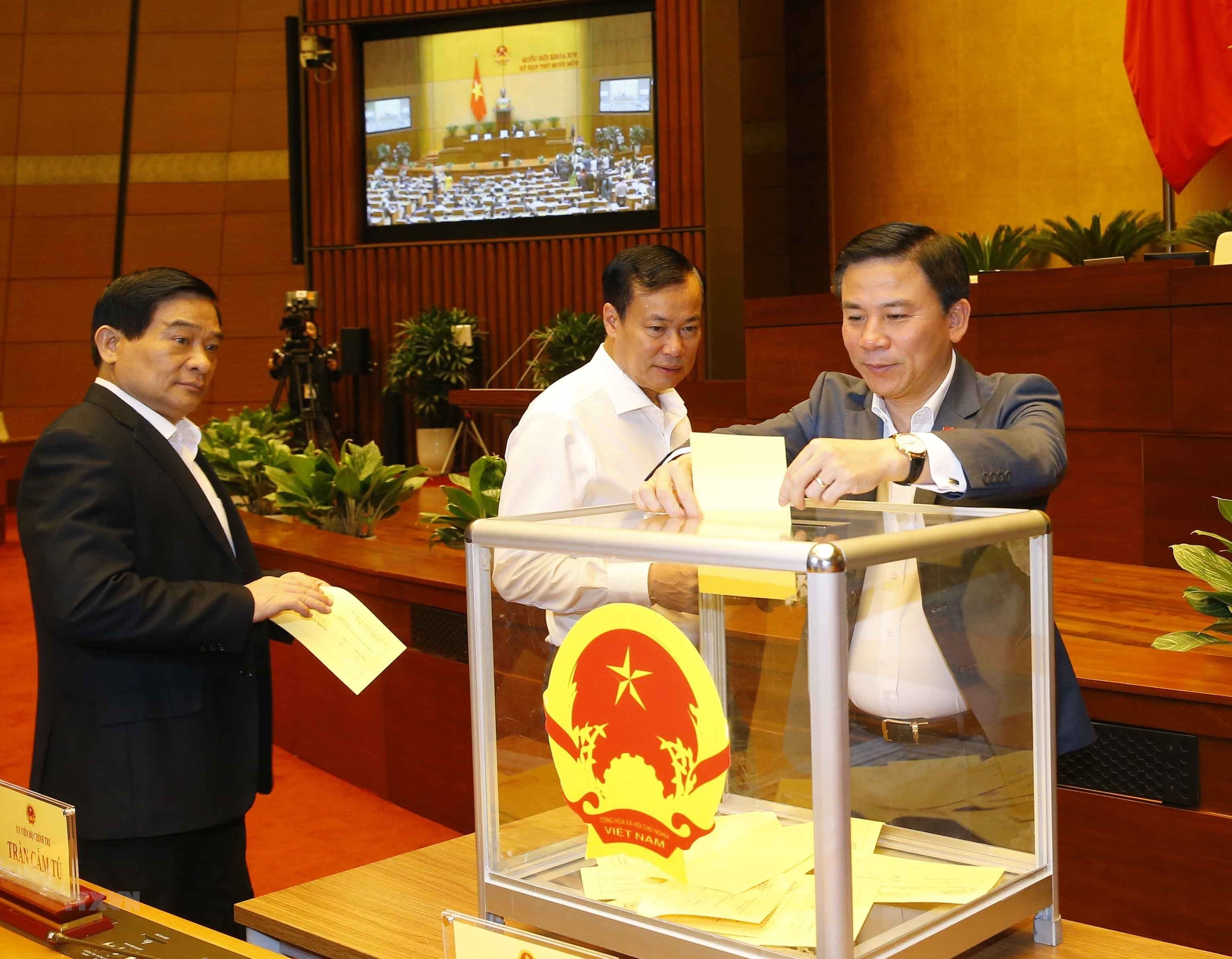 [Photo] Quoc hoi tien hanh quy trinh bo phieu bau Chu tich nuoc hinh anh 13