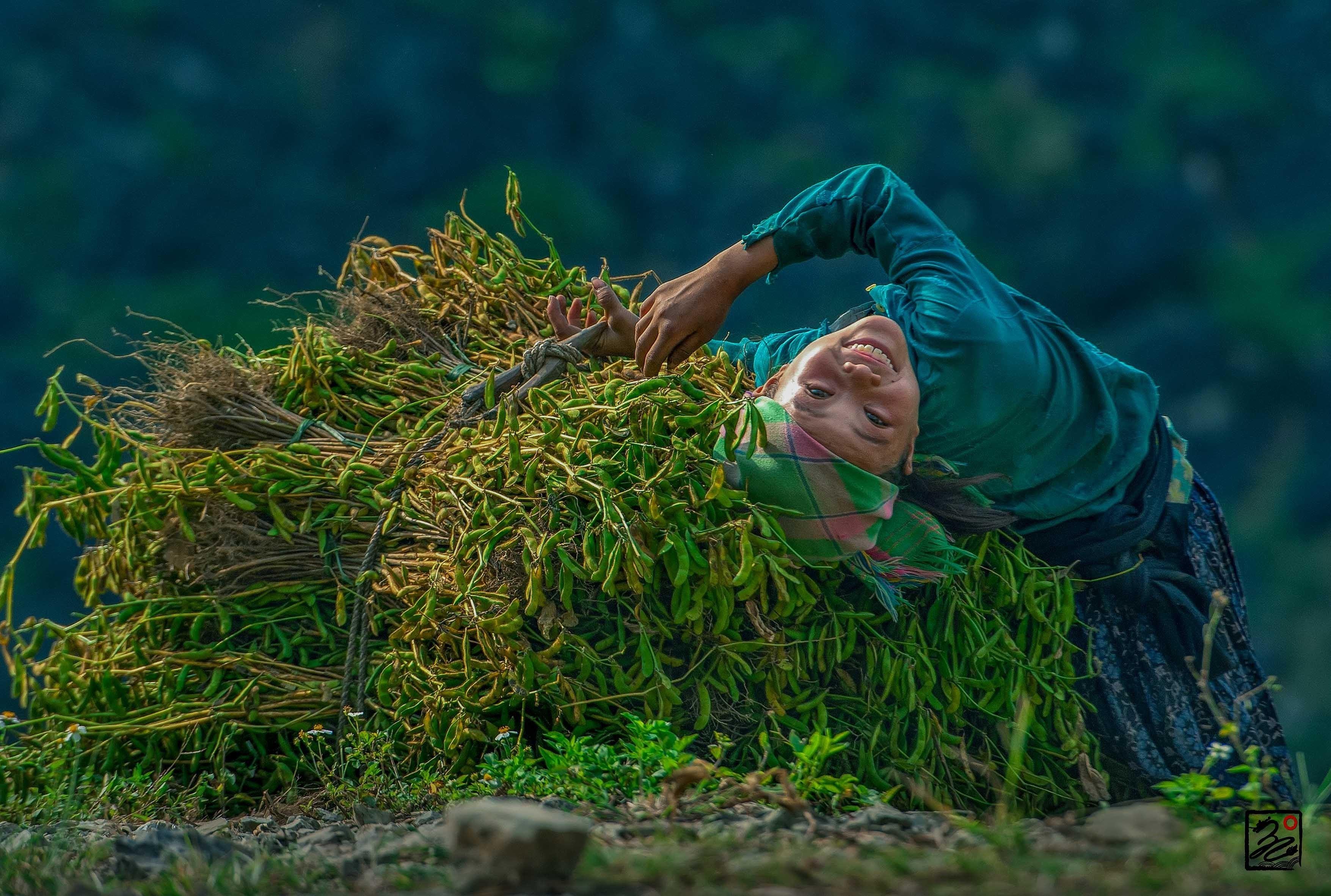 """组图:""""五彩缤纷的越南""""摄影展充分反映越南自然之美 hinh anh 3"""
