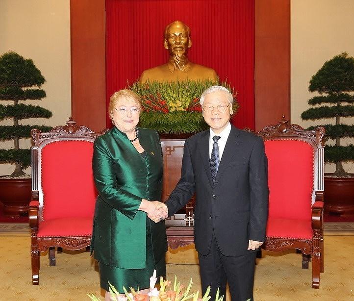 组图:越南智利建交50周年:全面伙伴关系日益向前迈进 hinh anh 4