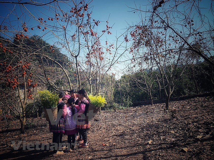 组图:西北山区孩子喜迎新春 hinh anh 7