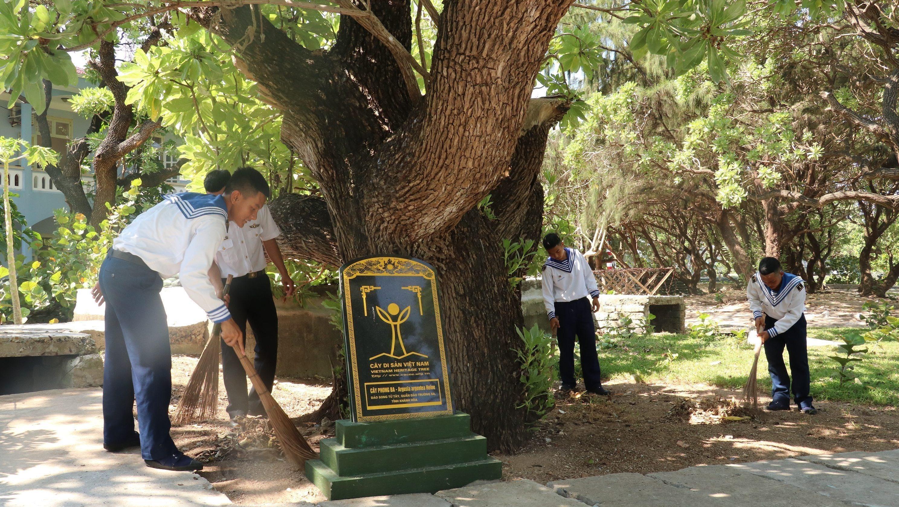 组图:长沙群岛上主权界碑——遗产树 hinh anh 6