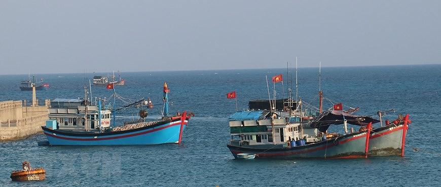 Sacred national flag on Truong Sa archipelago hinh anh 5