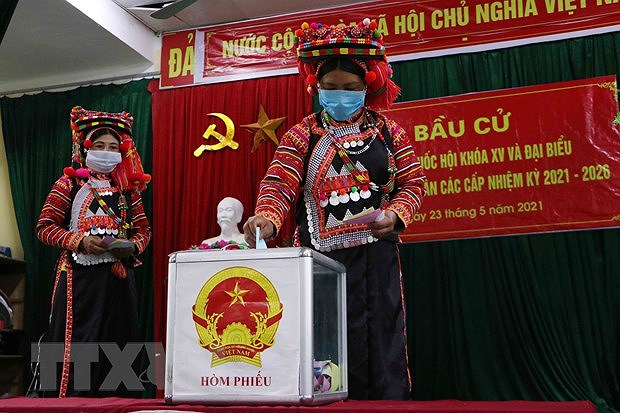 Voters nationwide cast ballots hinh anh 3