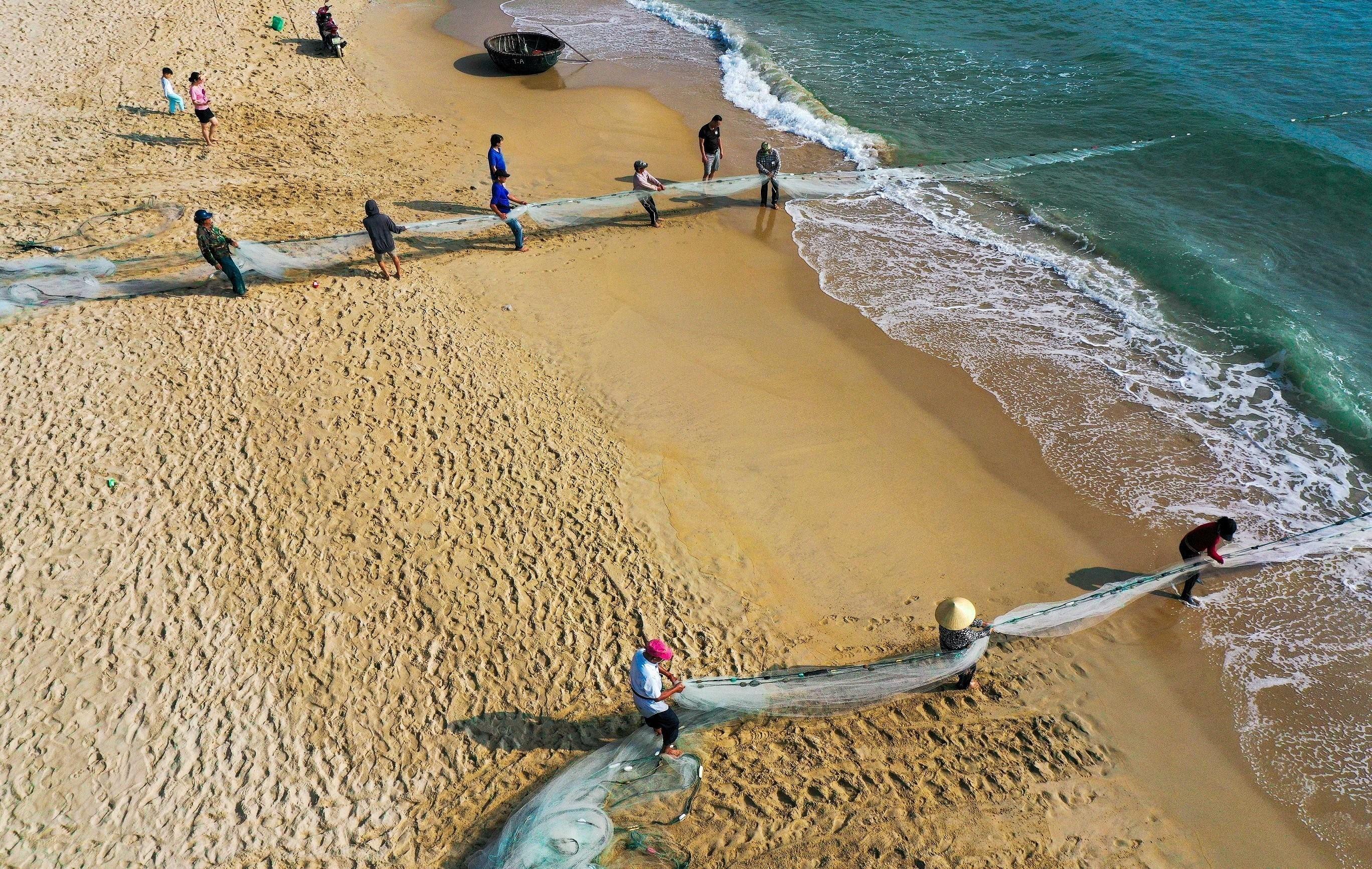 Fishermen pull in nets in Da Nang city hinh anh 1