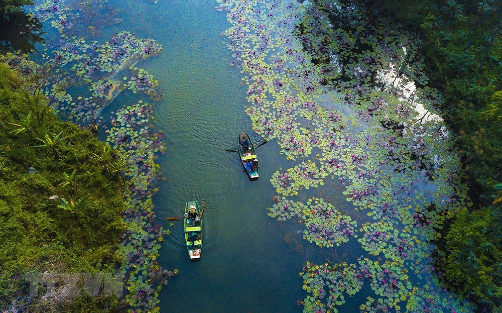 Ninh Binh – Heaven for instagrammers hinh anh 7