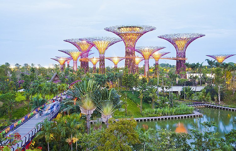 Golden Bridge named world's new wonders by UK daily hinh anh 3