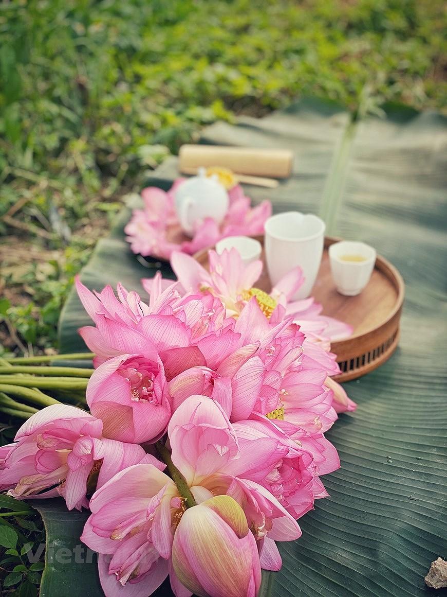 Enjoying lotus scented tea on summer days hinh anh 4
