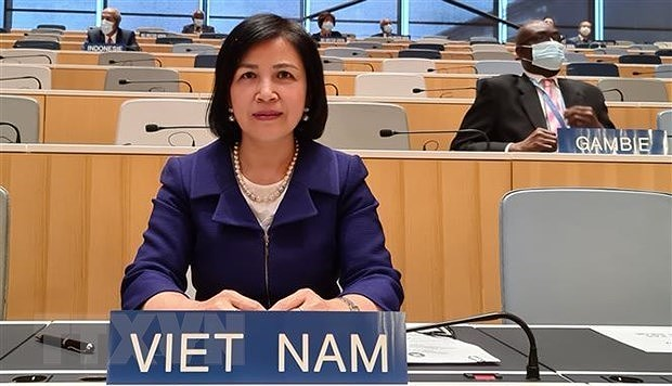 Vietnam highlights attainments in children, PWDs' rights promotion hinh anh 1