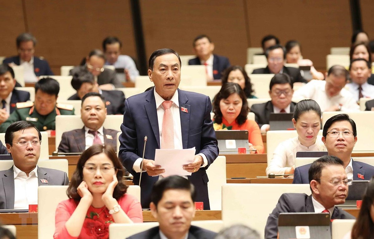 Deputies appreciate efforts, responsibility of State President, Government hinh anh 1