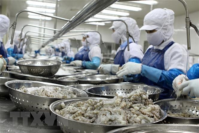 Agro-forestry-fisheries exports up over 24 percent in Jan-Apr hinh anh 1