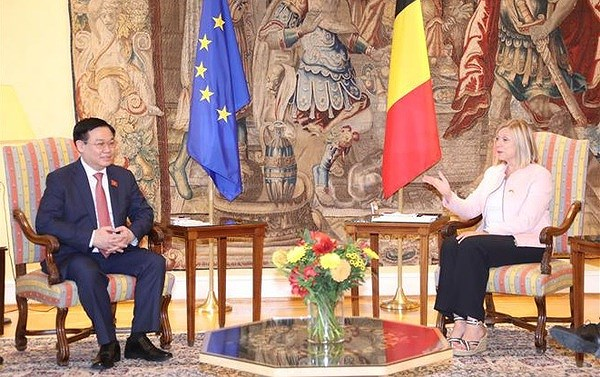 NA Chairman holds talks with leader of Belgium's Chamber of Representatives hinh anh 1