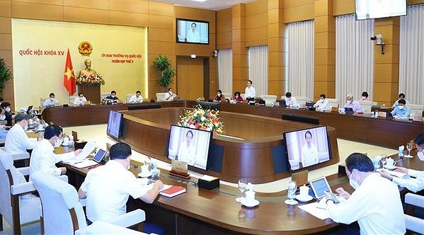 NA Standing Committee debates draft revised Cinematography Law hinh anh 1
