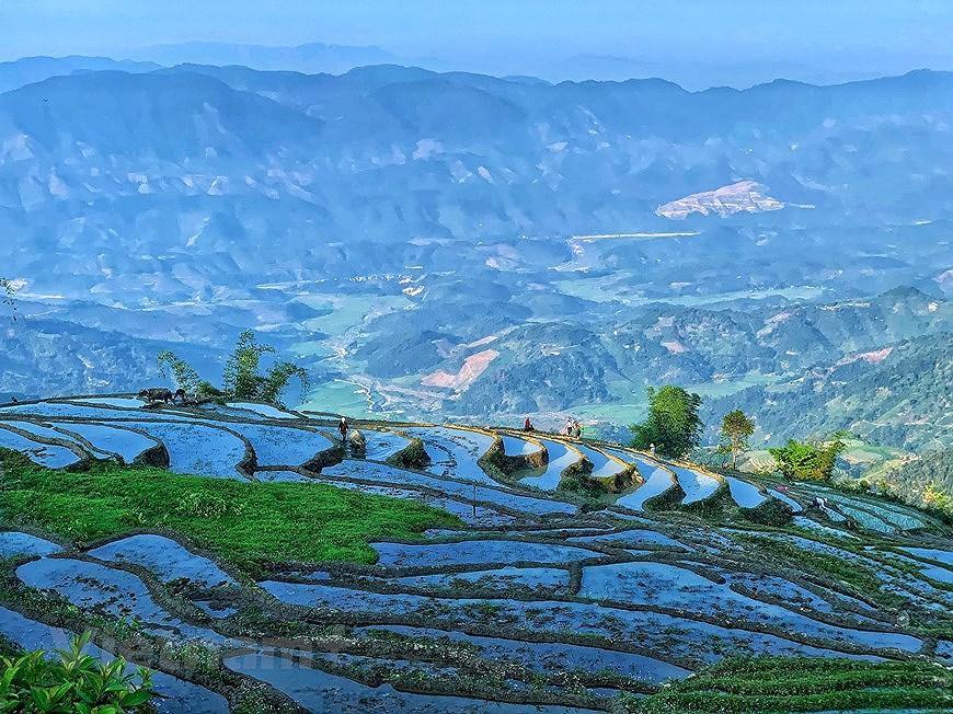 Belleza espectacular de las terrazas arroceras en la comuna de vietnamita Y Ty hinh anh 8
