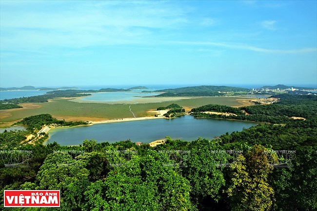 Mar y cielo de la isla vietnamita de Co To hinh anh 4