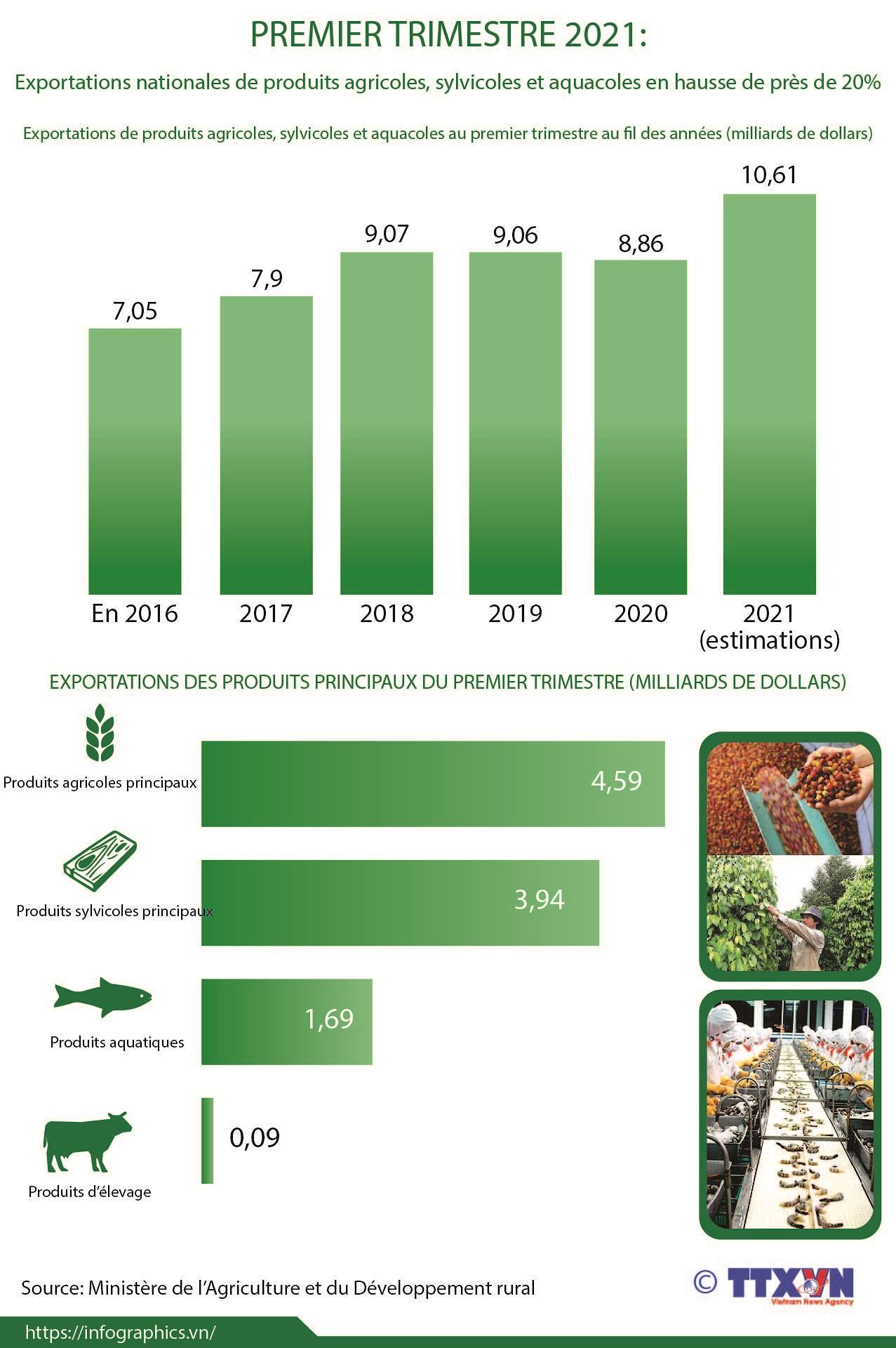 Exportations de produits agricoles, sylvicoles et aquacoles en hausse de 20% au 1er trimestre hinh anh 1