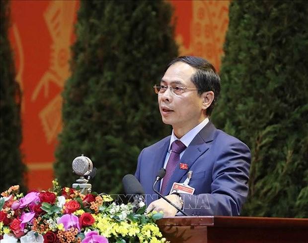 Дипломатия помогает создать благоприятную среду для национального развития hinh anh 1
